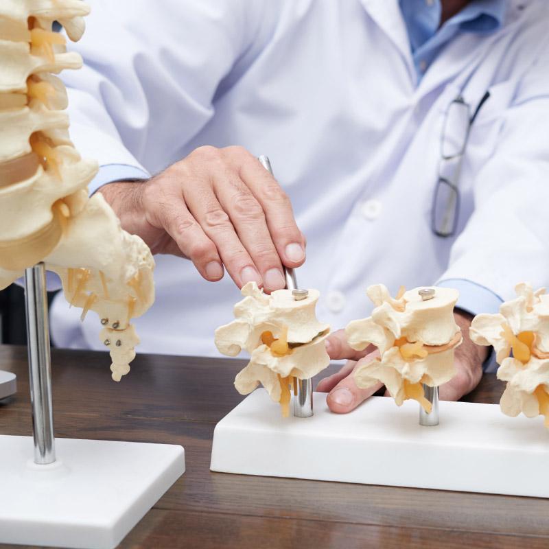 chiropractic treatment skeletal